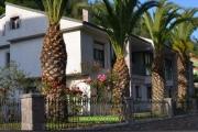 fachada-las-palmeras